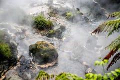 Córrego de Waikite e terraços quentes, vale vulcânico imagens de stock