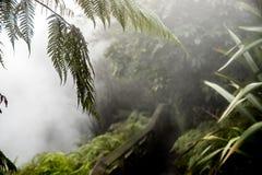 Córrego de Waikite e terraços quentes, vale vulcânico foto de stock