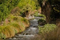 Córrego de Wanaka do lago fotografia de stock