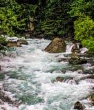 Córrego do Alasca carregado com os salmões Fotos de Stock Royalty Free