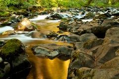 Córrego do duc do solenóide Imagem de Stock