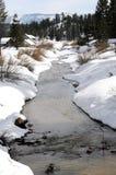 Córrego do inverno Imagens de Stock