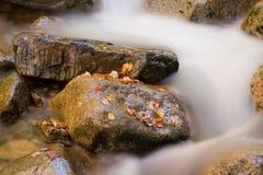 Córrego do outono Fotos de Stock Royalty Free