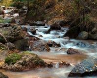 Córrego do outono Foto de Stock