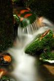 Córrego do outono em montanhas gigantes Imagens de Stock