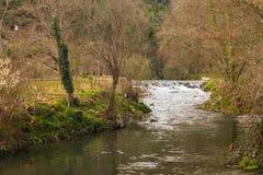 Córrego do rio em Portugal Fotografia de Stock Royalty Free