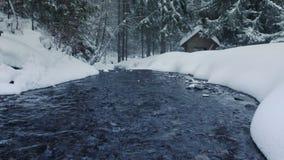 Córrego do rio na floresta do inverno vídeos de arquivo