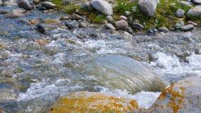 Córrego do rio rápido que flui em pedras perto acima Angra com água clara video estoque