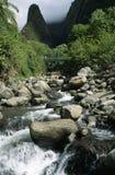 Córrego e agulha de Iao Imagens de Stock