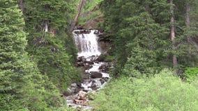 Córrego e cachoeira da montanha video estoque