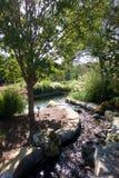 Córrego e lagoa do arboreto Fotografia de Stock Royalty Free