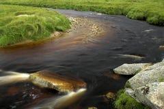 Córrego e prado Foto de Stock Royalty Free