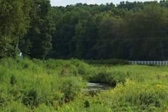 Córrego e prados do campo Foto de Stock Royalty Free