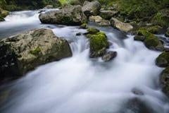 Córrego e rochas Fotografia de Stock