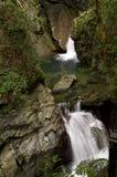 Córrego e rochas de fluxo no vertical Fotos de Stock