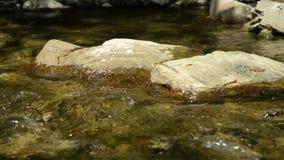 Córrego e rochas no rio filme