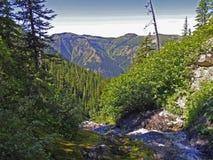 Córrego e vista Fotografia de Stock Royalty Free