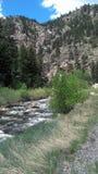 Córrego em Colorado Imagem de Stock Royalty Free