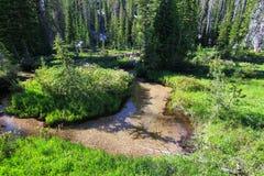 Córrego em Eagle Cap Wilderness, Oregon de Backcountry, EUA foto de stock royalty free