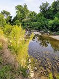 Córrego em Killeen Imagens de Stock Royalty Free