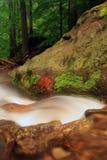 Córrego em montanhas de Jeseniky Fotos de Stock Royalty Free