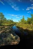Córrego em montanhas norueguesas Imagem de Stock