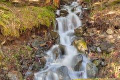 Córrego em Pyrenees Imagem de Stock