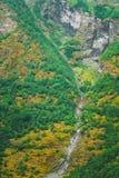 Córrego fino da água que flui da inclinação do norueguês Fotografia de Stock Royalty Free