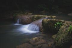 Córrego fresco Fotografia de Stock Royalty Free