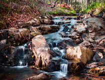Córrego fresco Imagem de Stock