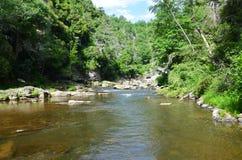 Córrego frio Foto de Stock