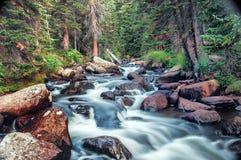 Córrego frio da montanha Imagens de Stock
