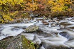 Córrego fumarento da montanha no outono fotografia de stock royalty free