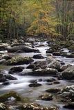 Córrego fumarento da queda da montanha Fotos de Stock Royalty Free