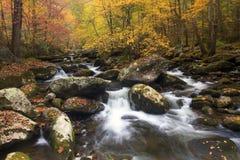 Córrego fumarento da queda da montanha Imagem de Stock