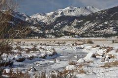Córrego gelado em Colorado Fotos de Stock