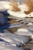 Córrego gelado no inverno Foto de Stock Royalty Free