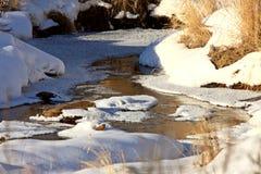 Córrego gelado no inverno Fotos de Stock