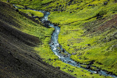 Córrego islandês Imagens de Stock Royalty Free