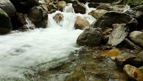 Córrego limpo do rio da montanha com mover-se do slider vídeos de arquivo