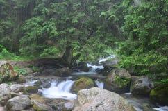 Córrego liso Foto de Stock Royalty Free