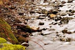 Córrego longo da exposição Imagem de Stock Royalty Free
