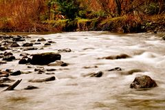 Córrego longo da exposição Fotografia de Stock Royalty Free