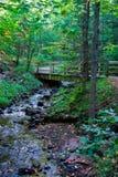 Córrego Meandering fotos de stock