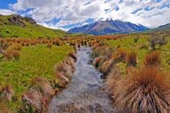 Córrego minúsculo através de um prado da montanha Imagens de Stock