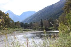 Córrego montanhoso fotografia de stock