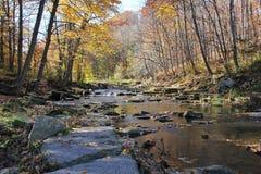 Córrego na floresta com rochas imagens de stock royalty free