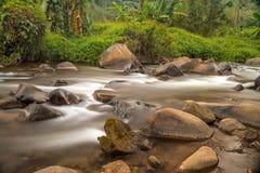 Córrego na floresta tropical de Tailândia Fotografia de Stock