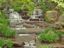 Córrego na floresta verde Fotos de Stock Royalty Free