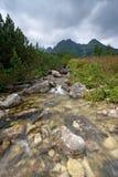 Córrego nas montanhas Imagem de Stock Royalty Free